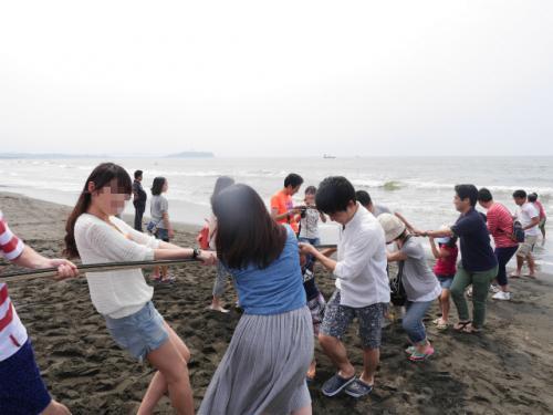 毎年恒例の茅ケ崎の地引網・・シラスは無くとも鰯が大漁!