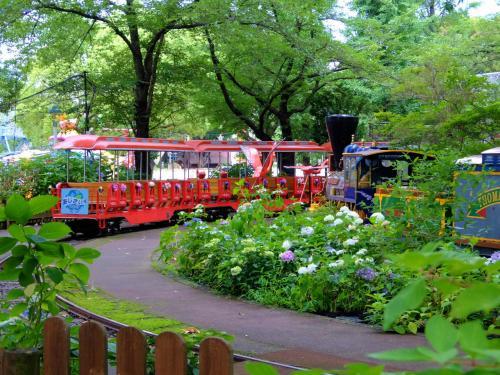 楽しい遊園地 豊島園のあじさい祭り 上