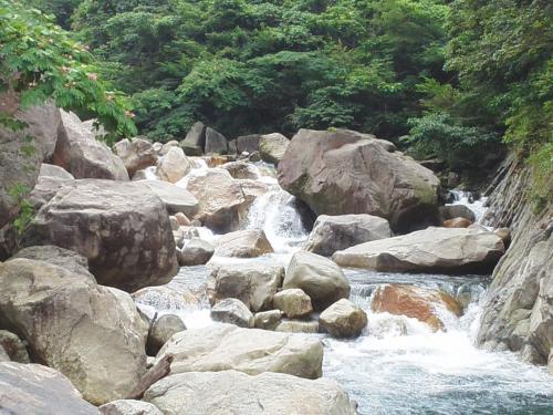 猿ヶ城渓谷でマイナスイオンを浴びよう  ※鹿児島県垂水市