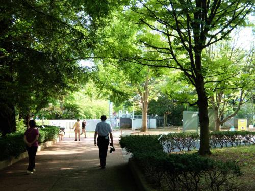 筑波実験植物園 その2