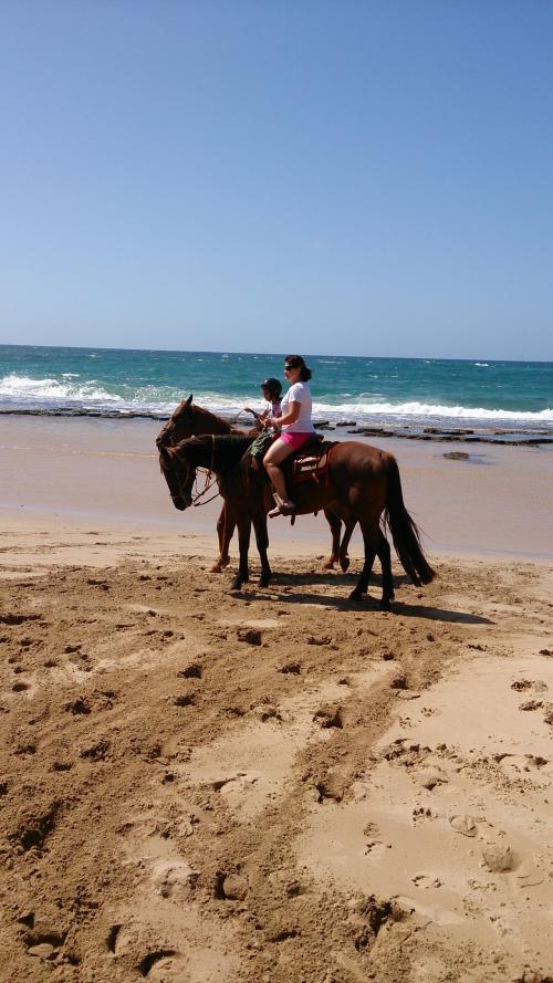 カウアイ島滞在5日目は、ポイプで乗馬をしました。<br /><br />これまで、ハワイ島で2回乗馬をしたことがありますが、毎回とても楽しいので、絶対にやろうと思っていたんです♪<br /><br />海あり山ありの景色は予想以上に素晴らしく、とっても良かったです!<br /><br />その後は、行っていなかった島の北側へドライブ。<br /><br />翌日はいよいよ日本へ帰ります!