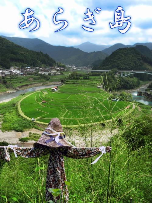 日本の棚田百選 和歌山有田川町清水 『 あらぎ島 』