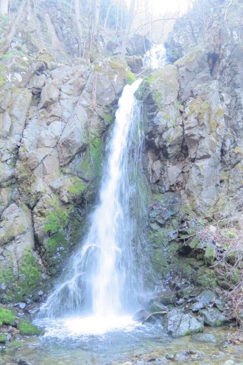 志戸平温泉で観光&バードウォッチング [2014](1)