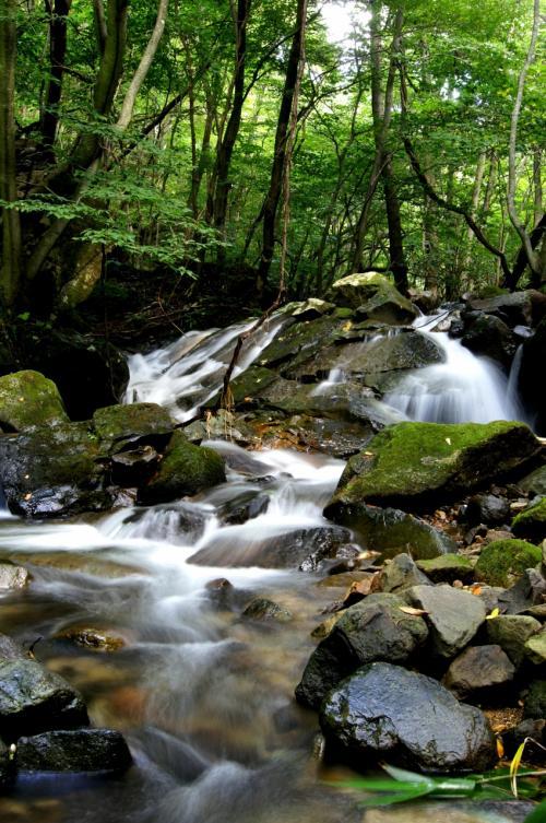 ◆大滝川渓流と幻の大滝