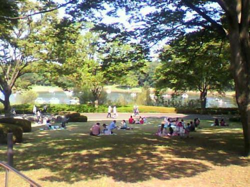 国営昭和記念公園へ行ってきました