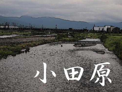 「東海道五拾三次」を歩く  十、小田原 ~ 箱根