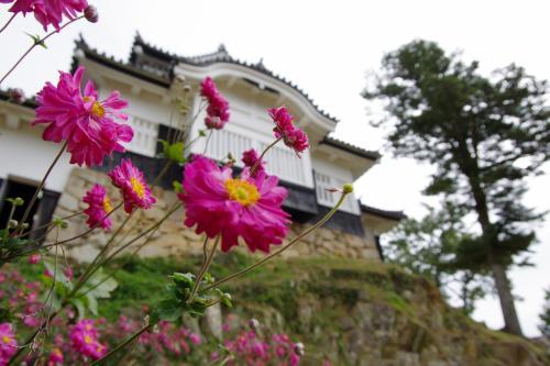 備中松山城に登城