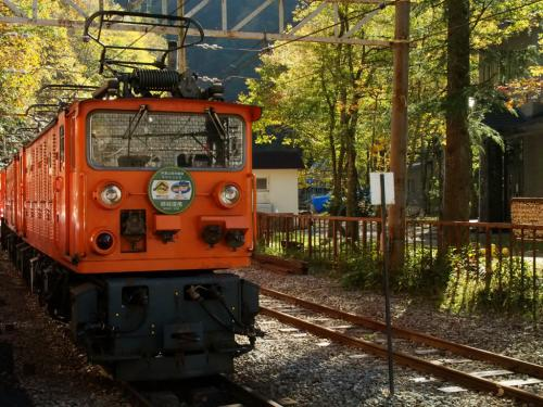 やっと乗れた! 紅葉の黒部渓谷トロッコ電車♪