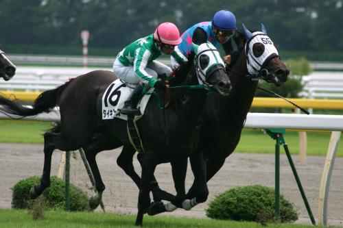 新潟競馬と猿ヶ京温泉(2005)