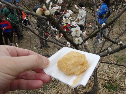 2015年3月 京都青谷梅林の梅まつり