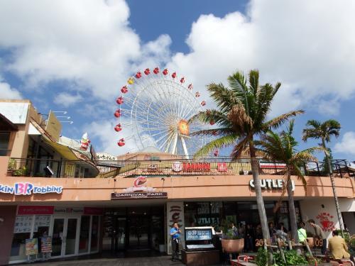 結婚記念(プレ ルビー婚)旅行は孫と一緒の沖縄−遊・食−縦断道中