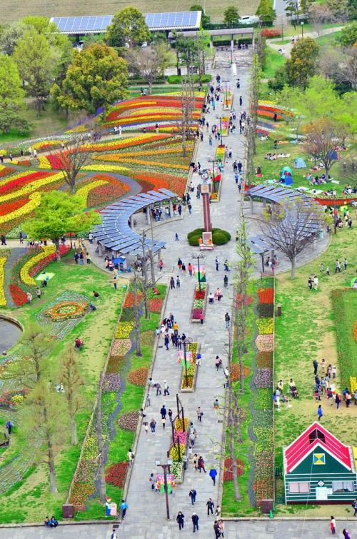 日本一大きな国営公園 木曽三川公園で「チューリップ祭2015」