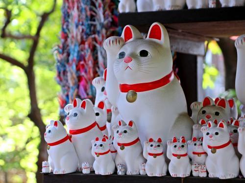 高校生だったころ、社会科の授業で日本史を選択しました。<br />教えて下さった先生の授業はお世辞にも上手とは言えませんでしたが、ごく稀に生徒の興味を引き付ける事をポロっと話される事がありました。<br />その話の一つに、【平将門】の話がありました。<br /><br />京の朝廷に逆らい日本の北端でクーデターを起こした平将門。<br />北関東の広い大地を生かし、馬を育てその馬を利用し騎馬戦の初期の戦法を作り出した将門。<br />彼は国司を敵に回し、瞬く間に下総国・常陸国・下野国(現在の千葉・茨城地方)をその支配下へと置いた。<br />そして、桓武天皇の血筋を引く将門は新皇(しんのう)と名乗り、朝廷にとっては逆賊となった。<br /><br />その将門の成敗を命じられたのは、平定盛(さだもり)。<br />平定盛は、将門のいとこに当たる人物で将門にとっては身内だ。<br />その身内の定盛君が、なぜ将門を討つことになったのか。<br />此処の話はちょっと複雑なのだが、女性が絡む話で、将門の許嫁であった女性を定盛君のお父様が横取りしてしまった…らしい。<br />そんなこんなで、将門は定盛君とは仲が悪かった。<br /><br />人望や戦法で行けば、将門に有利であった定盛君との戦い。<br />将門が勝つ…と誰もが思っていた。<br />しかし、金銭面や戦闘員の数で勝っていたのは朝廷をバックに持つ定盛君側。<br />2週間にも及ぶ戦いの末、将門軍は疲弊し、そして敗れた。<br />将門軍が敗れた最大の敗因は将門の死。<br />鋼鉄の体を持ち、矢が刺さる場所がない…と噂されていた将門にも弱点があったのだ。<br />その弱点とは、こめかみ。<br />将門はこめかみに矢を撃ち込まれ、あっけなくその命を落としてしまった。<br /><br />敵である定盛君サイドに将門の弱点情報をリークしたのは誰なのか。<br />それは、将門の寵姫であった桔梗の方。<br />彼女はこともあろうに敵方に寝返り、将門の死を招いたのだ。<br /><br />命を失った将門の屍は首を切り取られ、その首を槍の先に突き刺され京都まで運ばれてさらし首となった。<br />ところが、将門はさらし首になってもまだ生きていた。<br />そしてある晩、その首は宙に跳ね上がり、自分の国がある関東地方をめざし飛び去った。<br /><br />しかし生首の力にも限界があり、国に到達する一歩手前、現在の東京都の周辺で力尽き、落下した。<br />現在、将門の首が落ちたとされる場所には【将門の首塚】があり、将門塚と呼ばれ、粗末に扱うと禍が起こる…と云われている。<br /><br />日本史の先生のお話は、眠そうにしていた生徒の頭を覚醒させるには効果てきめん。<br />その授業の後の休み時間は将門の首塚の話で盛り上がり、図書館に走る生徒もいたほどでした。<br />私も図書館に走った生徒の一人で、暫くは将門の本の虜となっていました。<br /><br />大人となり、いつか訪れてみたいと思っていた将門の首塚。<br />しかし、将門塚の周辺で実際に起きていることを考えるとなんだかオカルトじみていて、行くことを躊躇していましたが、百聞は一見に如かず。<br />読むだけでは真実は分からない…と思い、新緑の芽吹く四月、東京都内の将門ゆかりの地を巡る旅に出てきました。<br /><br />そして、せっかく都内へ出るならばもう1か所(正確には2か所)行ってみたい場所もあったので、そこも合わせて都内の新緑散歩となりました。