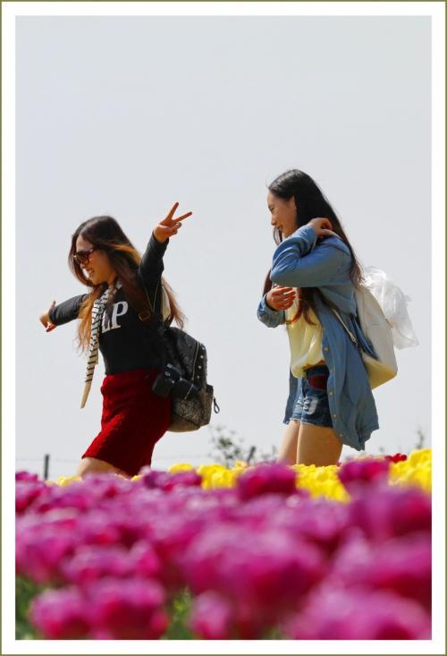 Solitary Journey [1568] 中国人のお嬢さん3人と周ったチューリップ畑&200万人記念セレモニー<春のチューリップ祭♪>広島県世羅町