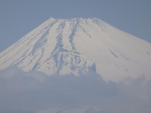 2015年3月、伊豆旅行(干物の次は、ミカンと富士山)