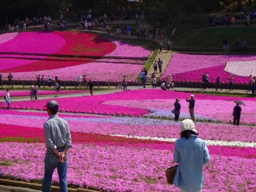 色彩感覚を麻痺させる丘の上から−−−。