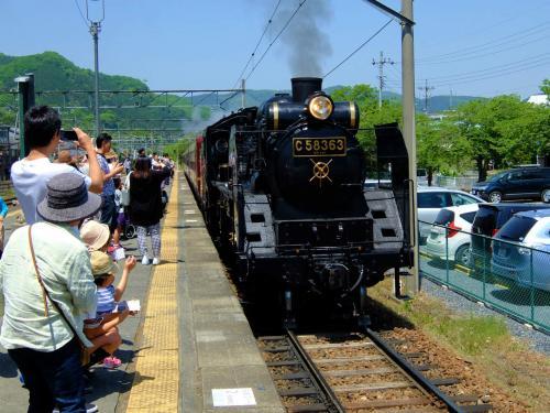 蒸気機関車に乗って秩父の羊山公園 芝桜を楽しむ 長瀞編