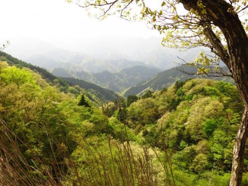 鎖場、ヤセ尾根、岩登り・・・大山三峰山