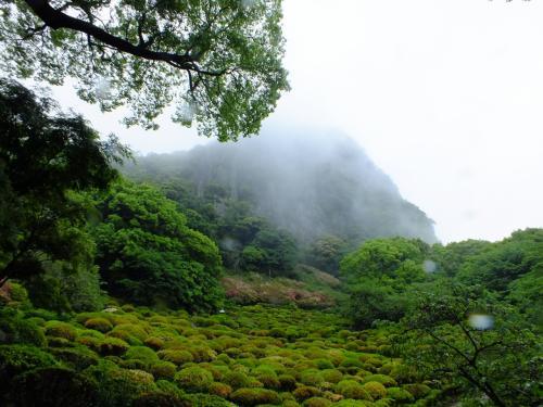 【GWの旅。呼子と平戸へGO~】その1:雨の御船山楽園と、イイ居酒屋みつけたぜの嬉野温泉へ。