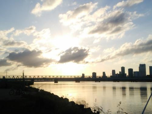 淀川の釣りと干潟の野鳥