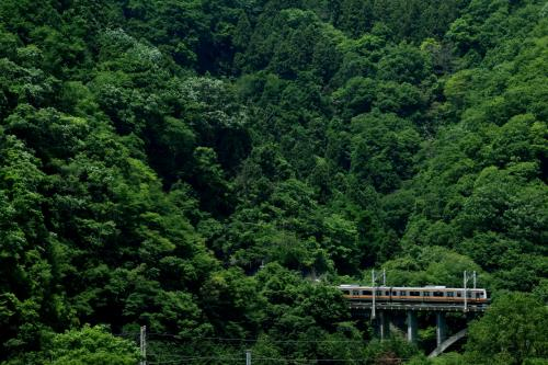 新緑の桂川と四方津駅周辺に広がる初夏の風景を探しに訪れてみた