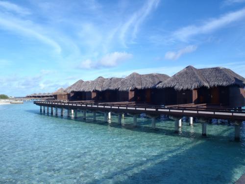 世界中に人気ホテルを持つ高級ホテルグループ・スターウッド。<br />モルディブにはアリ環礁にある、「W リトリート&スパ・モルディブ」と<br />ここ北マーレ環礁にある「シェラトン・モルディブ・フルムーン・リゾート&スパ」の2つを展開しています。<br /><br />ご存じの方も多いかもしれませんが、かつてここはモルディブのカジュアルな老舗リゾートのひとつ<br />「フルムーン・モルディブ」でしたが、2008年12月にシェラトンの冠が付き、スターウッドグループに<br />仲間入り。シェラトンが定める高いスタンダードをクリアし、より快適できめ細かいサービスを楽しめる<br />リゾートにアップグレードしました。<br />カップル、ファミリー、ダイバー幅広いニーズに対応するこちらのリゾートも視察してきました。<br /><br />