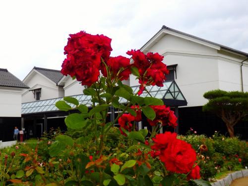 国是 テーゼ グンゼ ~地域が誇る産業の歴史の庭にバラが咲いた~