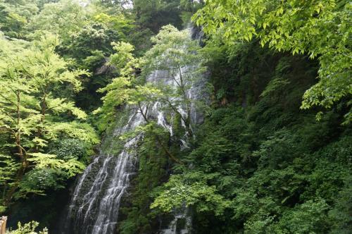 2015年 6月福井の旅(前半)