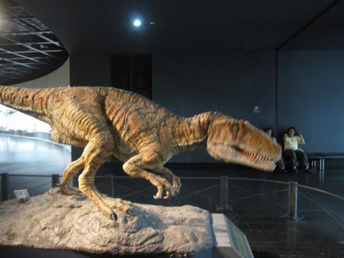 丸岡城から福井恐竜博物館へ