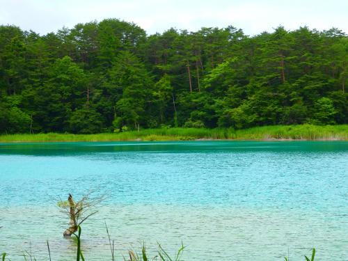 星野リゾート裏磐梯ホテルに泊まる五色沼ハイキング③―神秘的なブルーの沼を巡る五色沼探勝路と猪苗代湖