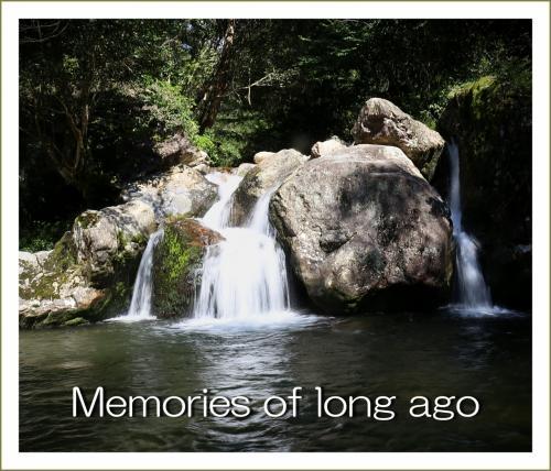 Solitary Journey [1634] 遠い過去の記憶を辿って、46年前に行った林間のキャンプ地3カ所を探検!<並滝寺・関川>広島県東広島市