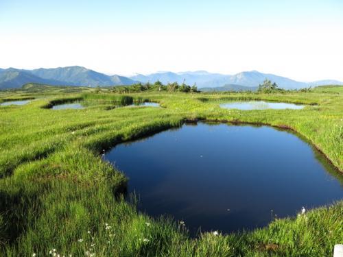 天空の湿原、苗場山は優しい山か?!