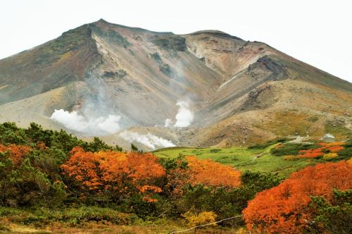 秋を彩る雲上の楽園「大雪山国立公園」を散策!! 山岳リゾート「ラビスタ大雪山」に連泊
