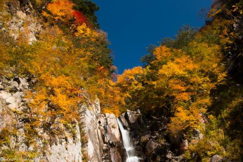 デンジャラス満載の火焔滝での紅葉狩り