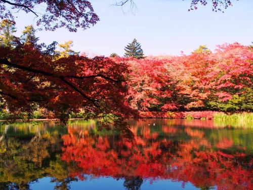 <紅葉と温泉の群馬&信州旅・1>秋の軽井沢サイクリング・真っ赤な雲場池と旧三笠ホテル