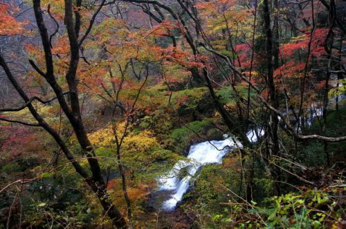 ◆禁断の渓谷・戸草川渓谷・みちのく最後の紅葉