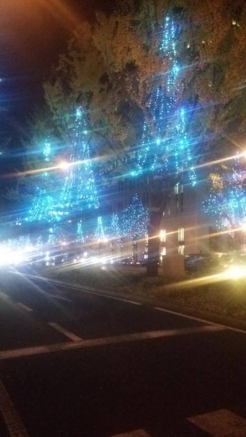 心舞う冬の宴「なんば光の旅」