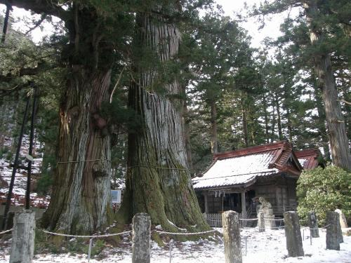 塩原温泉で温泉に入りながら山の会総会の旅・・・②塩原八幡宮に逆さ杉を訪ねて