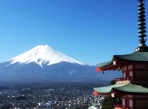 富士山を心に刻む、ひとり旅 1…新倉富士浅間神社、忍野八海、花の都公園