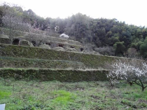 春の18きっぷで中国四国のたびin石見銀山