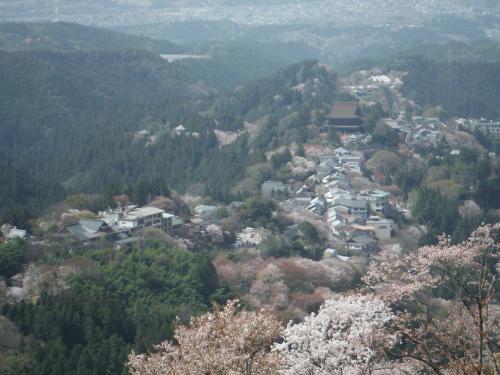 奈良と大阪に行ってきました。(1日目)
