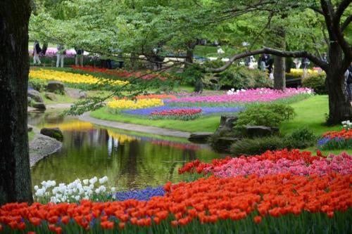 日本庭園の趣がとても良くなった春の昭和記念公園2016