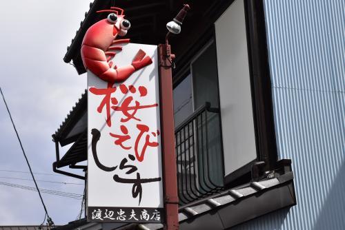 桜えびづくしの由比を訪ねて(静岡)