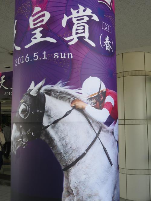 京都競馬場へチャリで行く、ついでに二匹目のドジョウを狙う?