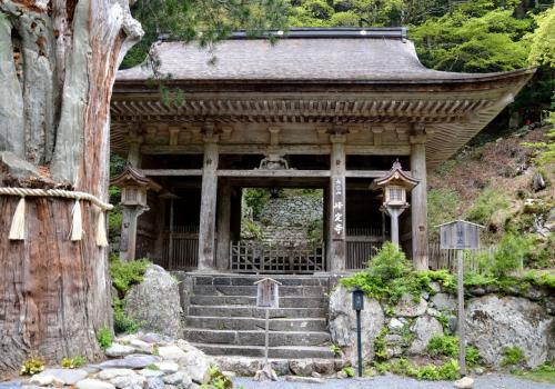 京都花背の峰定寺を訪ねました。以前から訪ねたいと思っていたのですが、収蔵庫の特別拝観は5月連休と11月のそれぞれ3日間だけ、雨が降れば本堂までも登れないということで、延び延びになっていました。今回は連休の高速道路の渋滞も覚悟して出掛けることに。お寺は、連休にもかかわらず訪れる人もまばら。仁王門の入口で財布とハンカチ以外のすべての荷物を預け、約400段の階段を登り舞台懸崖造りの本堂まで。せっかく京都まで来たのだからということで、大原の三千院と来迎院にも寄りました。新緑が大変綺麗でした。