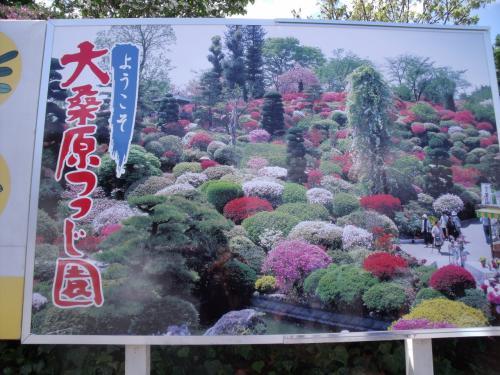 須賀川市の花の名所 『大桑原(おおかんばら)つつじ園』 パステルの丘が見頃に