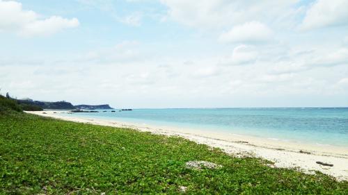 母と冬の沖縄旅3泊4日へ行ってきました。<br /><br />母のANAマイルで期限切れが近いものの消化に、どこか温泉でも行く?と聞いたら、「沖縄に行きたい」と言う。<br />え?私としては願ったり叶ったりですけど。<br />私は多分3回目・・・いや4回目かも?よくわかりませんが何十年ぶりかの沖縄上陸です。<br />
