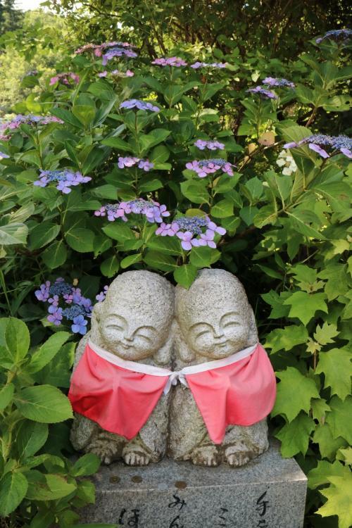 紫陽花綻ぶ新宮寺と南宮神社へ行ってミタ! 2015