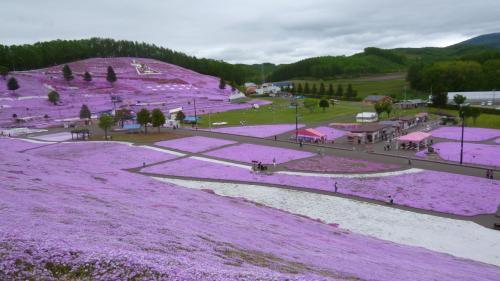 2016年「春の絶景を楽しむ北海道4日間」の旅 その1