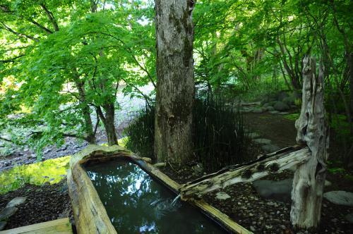 ツツジ咲く道南で温泉三昧【2】~森の中に佇む銀婚湯~